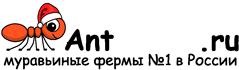 Муравьиные фермы AntFarms.ru - Владикавказ
